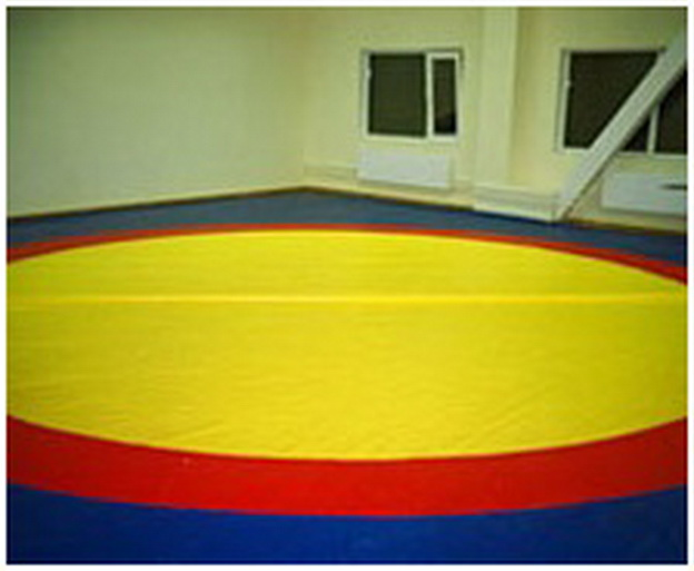Борцовский ковер одноцветный с люверсами 6х6 м